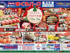 20181221(折込)堺_アートボード 1