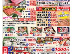 20190601-0607岸和田片面-01