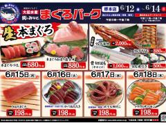 20200612-06184堺-01